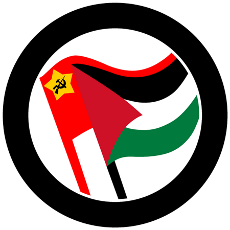 http://ciml.250x.com/sections/arabic_section/images/solidarity_with_the_palestinian_people_small.png